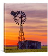 Pura Pura Windmill, Canvas Print