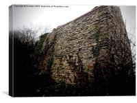 A stone outbuilding on Wenlock Edge, Shropshire, Canvas Print