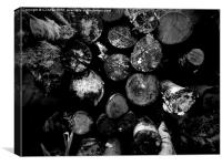 Logs- Black and White, Canvas Print