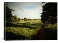 Heath Common, Yorkshire, Canvas Print