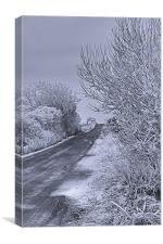 Winter Road, Canvas Print