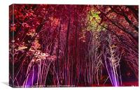 Electric Forest - Bedgebury, Canvas Print