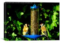 Goldfinches, Canvas Print
