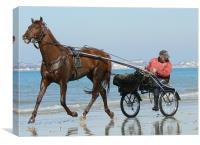 A trot on the beach, Canvas Print