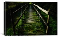 mysterious bridge in the woods, Canvas Print