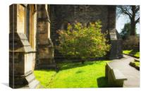 Springtime in Llandaff, Canvas Print