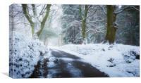 Snowy lane, South Wales, Canvas Print