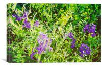 Wild Delphinium Bliss, Canvas Print