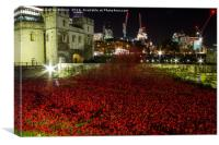 Tower Of London Wave of Poppies, Canvas Print