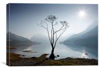 Morning mist on Buttermere, Canvas Print