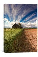 Old Barn On The Fields Edge, Canvas Print