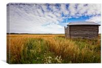 Tiny Barn House On The Oat Fields, Canvas Print