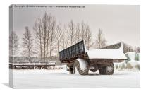 Old Trailers After Snowfall, Canvas Print