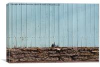 Crack In The Fence, Canvas Print