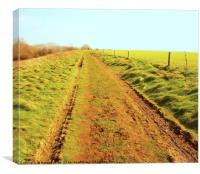 The Path, Canvas Print