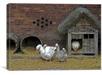 Ye olde farmyard