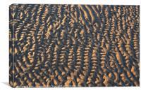 beach Ripples, Canvas Print
