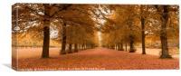 Marbury park, Canvas Print