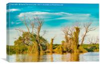 Parana River, San Nicolas, Argentina, Canvas Print