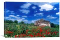 Old Stone House in Poppy Field, Canvas Print