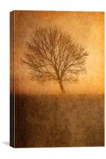 Single Tree, Canvas Print