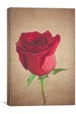Be My Valentine - Matte Finish, Canvas Print