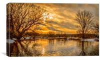 Golden River, Canvas Print