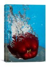 Apple Bath, Canvas Print