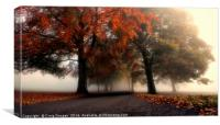 Foggy Autumn Trees, Canvas Print