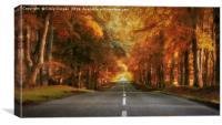 Autumn Drive, Canvas Print