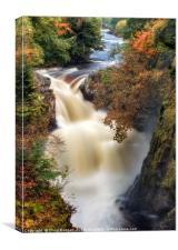 Reekie Linn Waterfall, Canvas Print