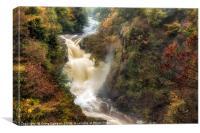 Reekie Linn Gorge & Waterfall , Canvas Print