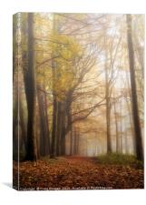 Mysterious Woods, Canvas Print