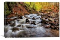 Alyth Burn Scotland, Canvas Print