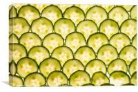 Sliced Cucumber, Canvas Print