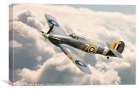 Flying High; Royal Navy Hawker Sea Hurricane., Canvas Print