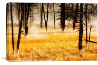 Yellow Wood, Canvas Print