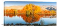 Autumn Colours; Lake Benmore, Canvas Print