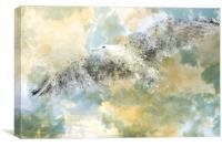 Vanishing Seagull, Canvas Print