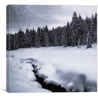Bavarian Winter's Tale VII, Canvas Print