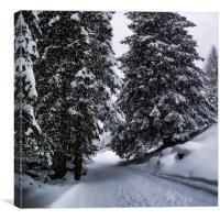 Bavarian Winter's Tale X, Canvas Print
