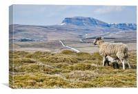 Pen Y Ghent at Lunchtime, Canvas Print