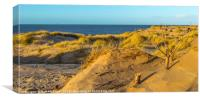 Formby sand dunes,Formby UK, Canvas Print