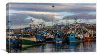 Fishing Boats Mallaig Harbour, Canvas Print