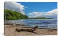 Port Bawn, Inchcailloch, Loch Lomond, Canvas Print