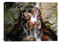 Water Feature, Canvas Print