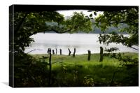 Woodland vista, Canvas Print