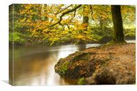 Autumn at Golitha Falls, Canvas Print