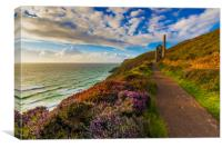 Heather splendour Wheal Coates, Canvas Print