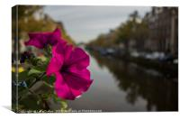 A flower on the Amsterdam Canal , Canvas Print